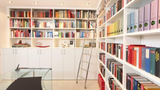 libraryladder2
